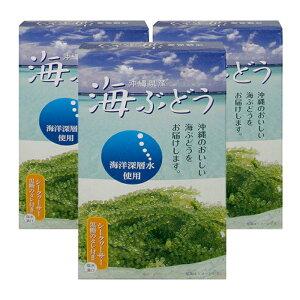 海ぶどう塩水漬け(60g×3箱セット)