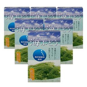 海ぶどう塩水漬け(60g×6箱セット)