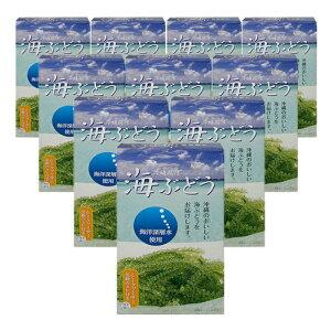 海ぶどう塩水漬け(60g×10箱セット) 全国送料無料