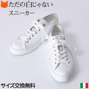 レザー スニーカー レディース シューズ 本革 おしゃれ シンプル ホワイト 白 イタリア製 ブランド コルソローマ CORSO ROMA 9 厚底 靴 ローカット レースアップ インヒール 23cm 大きいサイズ 25cm