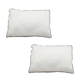 枕 Goosely グースリー 2個セット 洗える まくら 羽毛のような ふんわり いびき防止 快眠 横向き 低反発 洗濯できる まくら ストレートネック 調整 やわらかめ 低め 調整シート 通気性 テンピュール 帝人 43 × 63 cm 正規品