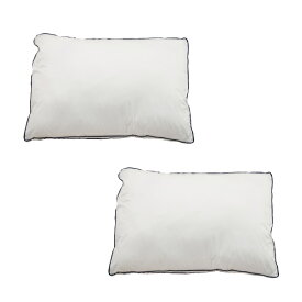Goosely グースリー 枕 2個セット 羽毛のような ふんわり いびき防止 快眠 横向き 低反発 洗える まくら ストレートネック 高さ調整 固め 高い 調整シート 通気性 43×63cm