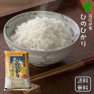 新米・令和2年産【送料無料】<免疫力アップ/玄米・分づき対応可> 福岡県産 ひのひかり ヒノヒカリ 白米 5kg×1袋 おいしい 美味しい 米 お米 こめ おこめ 5キロ送料無料 ブランド米 精米し