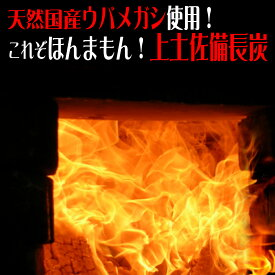 備長炭 10kg BBQ炭(上土佐備長炭) 小さめサイズ   炭 土佐備長炭 BBQ BBQ炭 燃料 職人 窯元 窯 遠赤外線 イベント 干物 七輪 焚火