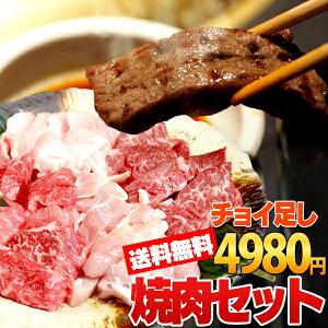 送料無料 国産 黒毛和牛 4種盛り ハラミ カルビ 焼肉 バーベキュー 肉 BBQ セット 焼き肉セット 焼き肉 焼肉 送料無料 バーベキュー焼肉セット500g