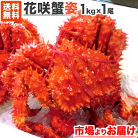 花咲蟹姿1尾