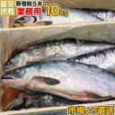 【 業務用 】塩漬け 新巻鮭 北海道産 10kg 5尾 | 塩鮭 姿 鮭 北海道 一本もの シャケ しゃけ サケ さけ 産地直送 ギフ…