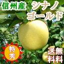 信州産りんご5キロ【シナノゴールド】特選特秀品 美味しい産地から直送!