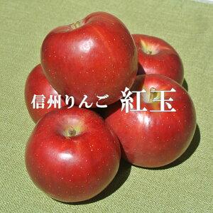 信州りんご【紅玉りんご】訳ありご家庭用 4.5〜5kg9月下旬ごろから発送予定!