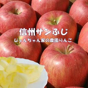 信州サンふじりんごご家庭用10kg【じゅんちゃん家の農園】【ご家庭用】【送料無料】【長野産】