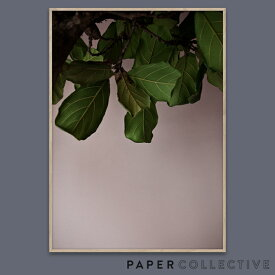 【PAPER COLLECTIVE】GREEN LEAVES/グリーンリーブス 07120 50x70cmペーパーコレクティブ/Norm Architects/ノームアーキテクツ/ポスター/葉/北欧/インテリア コンビニ受取対応【RCP】