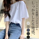Tシャツ レディース 半袖 カジュアル おしゃれ 大きいサイズ 体型カバー 5分袖 カットソー トップス (メール便送料無…