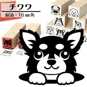 チワワイラストが選べるゴム印かわいい犬のイラスト入りはんこ16mm角プレゼントギフトグッズ