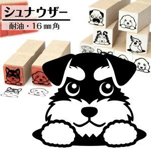 シュナウザーイラストが選べるゴム印かわいい犬のイラスト入りはんこ16mm角プレゼントギフトグッズ
