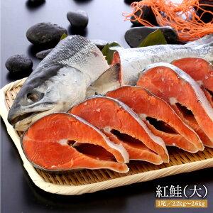 能代水産 紅鮭(大1尾)2.2kg~2.6kg[冷凍]送料無料 さけ 鮭[あきた白神ツーリズム]