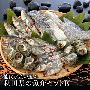 能代水産が選ぶ 秋田県の魚介セットB[冷凍]送料無料 ハタハタ 鯛 塩麹 秋田産[あきた白神ツーリズム]※内容は季節や水揚げ状況によって変わる場合があります。