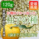 ネコポス可【愛媛産】有機柚子の種 無添加な柚子を使用 120g