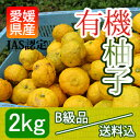"【B級品送料込】愛媛産の""有機生柚子""[2kg入]JAS認定完全無農薬"