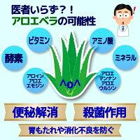 沖縄宮古島産無農薬アロエベラ100%アロエジュース