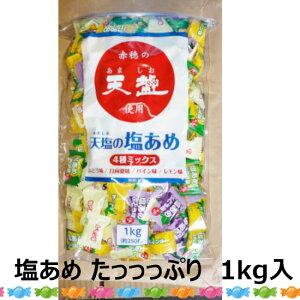 天塩の塩あめ ミックス(ぶどう・日向夏・パイン・レモン) 1kg塩飴 熱中症対策 飴 熱中症 1kg 詰め合わせ 塩 業務用