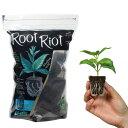 CLONEX Root Riot Plant Starter Cubes 50