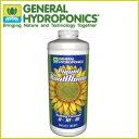 活力剤(PK剤) GH リキッド・クールブルーム946ml GH Liquid KoolBloom 送料全国一律650円.沖縄、離島除く