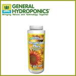 植物活性剤