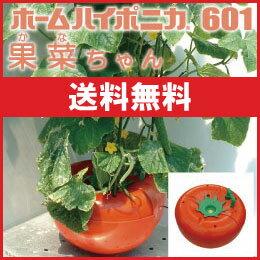 LEDも使える 水耕栽培 キットのホームハイポニカ601果菜ちゃん 送料込
