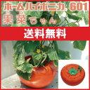 野菜 LEDも使える 水耕栽培 キット ホームハイポニカ601果菜ちゃん 送料込み