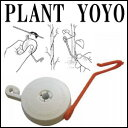 Yoyo plant