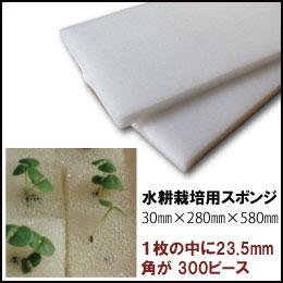 水耕栽培 スポンジ 培地×1枚(23.5mm角が 300ピース入りの水耕栽培 スポンジ)