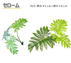 マグネット式壁面装飾フェイクグリーンセロームPG−015