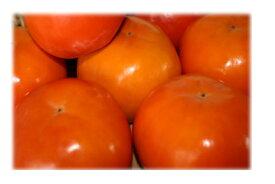 低農薬 有機質肥料 産地直送 奈良県 西吉野 富有柿 2Lサイズ 24個(約7.5kg)【発送:10月下旬頃〜12月上旬頃】たっぷりの天然ミネラルとにがり、吉野の気候風土が、ふるさとを思い出す味を柿に与えた。
