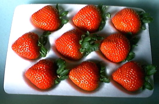 宝石の輝き、霞ヶ浦の香り高い甘味と酸味の絶妙なバランス、有機肥料栽培いちご・やよいひめ or かおり野9個入り2パック【発送1月〜3月下旬頃】(大粒の9個入りは1月以降の収穫、発送になります。特別なパッケージで大切にお届けします)