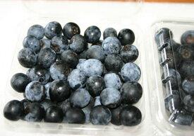 農薬不使用 奈良県 西吉野のブルーベリー・ラビットアイ 約1kg 完熟の甘さを届けます【発送時期:7月下旬頃〜8月上旬頃】