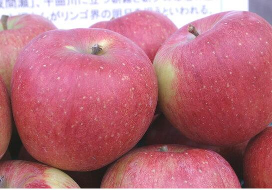 まるかじりできる 青森 津軽岩木山のリンゴ!徹底 減農薬、無袋栽培 シナノスイート(ご家庭用)約5kg 【発送:10月中旬頃〜10月末頃】