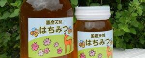 奈良県 吉野の山里こだわりの100%純粋国産蜂蜜600g (ガラス瓶入り)ミツバチが元気に花の蜜を採取する期間は一切の化学農薬・除草剤等不使用農家仲間の森本養蜂場さんの蜂蜜!ミネラル