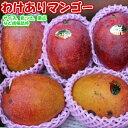 送料無料 訳あり マンゴー 国産 産地直送 沖縄産わけありマンゴー約5kg(約12〜16個)いっぱい食べたい方へ!【ご贈答…