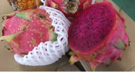 農薬不使用 完熟 ピタヤ わけあり 沖縄産ドラゴンフルーツ 約5kg(約10〜20個前後)※送料込 産地直送です【発送期間:7月下旬頃〜11月中旬頃】トロピカルフルーツの極致!※現在配達日指定不可