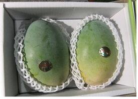 送料無料 産地直送 希少!わけあり沖縄産キーツマンゴー約1kg(1〜2個)【発送期間 8月上中旬頃〜9月中旬頃】