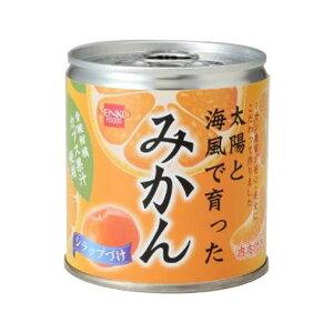 太陽と海風で育った みかん(缶)(295g)【健康フーズ】