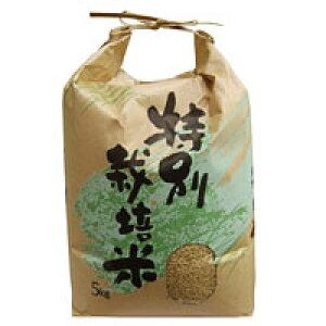 2019年度産 長崎県産 特別栽培米 ヒノヒカリ 玄米(5kg)【上島農産】