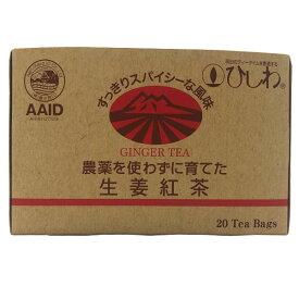 【冬季限定】農薬を使わずに育てた生姜紅茶TB(40g(20袋))【菱和園】