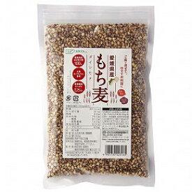 【数量限定】愛媛県産 もち麦(300g)【創健社】