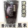 酵素栽培敬献糙米(250g)