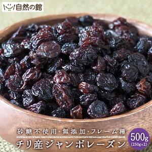 チリ産 ジャンボレーズン 500g(250g×2) フレーム種 送料無料 ドライフルーツ 保存に便利なチャック付き [ 砂糖不使用 無添加 レーズン フルーツ 大粒 干しぶどう ブドウ ほしぶどう お試しサイ