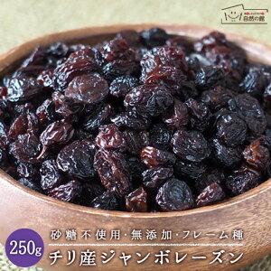チリ産 ジャンボレーズン 250g フレーム種 送料無料 ドライフルーツ 保存に便利なチャック付き [ 砂糖不使用 無添加 レーズン フルーツ 大粒 干しぶどう ブドウ ほしぶどう お試しサイズ 自然