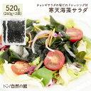 \お得な2個セット 断然オトク/送料無料 サラダが簡単♪購入者絶賛レビュー評価4.62! 寒天海藻サラダ メガ盛合計520g…