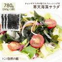\お得な3個セット 断然オトク/送料無料 サラダが簡単♪購入者絶賛レビュー評価4.62! 寒天海藻サラダ メガ盛合計780g…