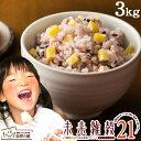 未来雑穀21+マンナン 3kg(500g×6) 完全 国産 雑穀で栄養・健康 お試しセット雑穀ご飯 送料無料 雑穀人気店の自慢の雑…